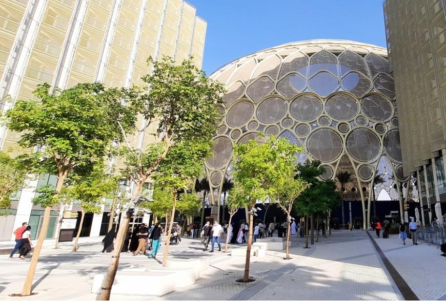 Дерев'яні павільйони на EXPO 2020